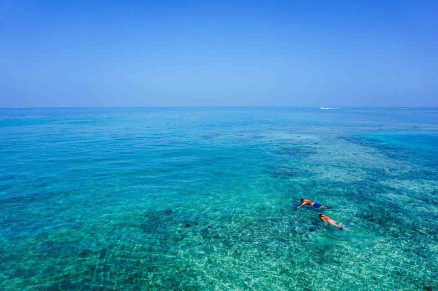 Les plus beaux spot de plongée