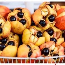 Ackee, le fruit national de la Jamaïque